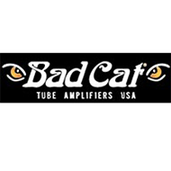 Bad Cat Amps